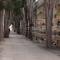 Marsala, cimitero chiuso il 29 maggio per disinfestazione