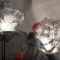 """""""Sculture di luce"""" in mostra a Marsala all'ex Convento del Carmine"""