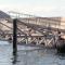 Aliscafi a Favignana: modifiche di tratte e orari fino al 19 ottobre