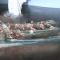 Battaglia delle Egadi, in corso la desalinizzazione dei rostri recuperati a largo di Levanzo